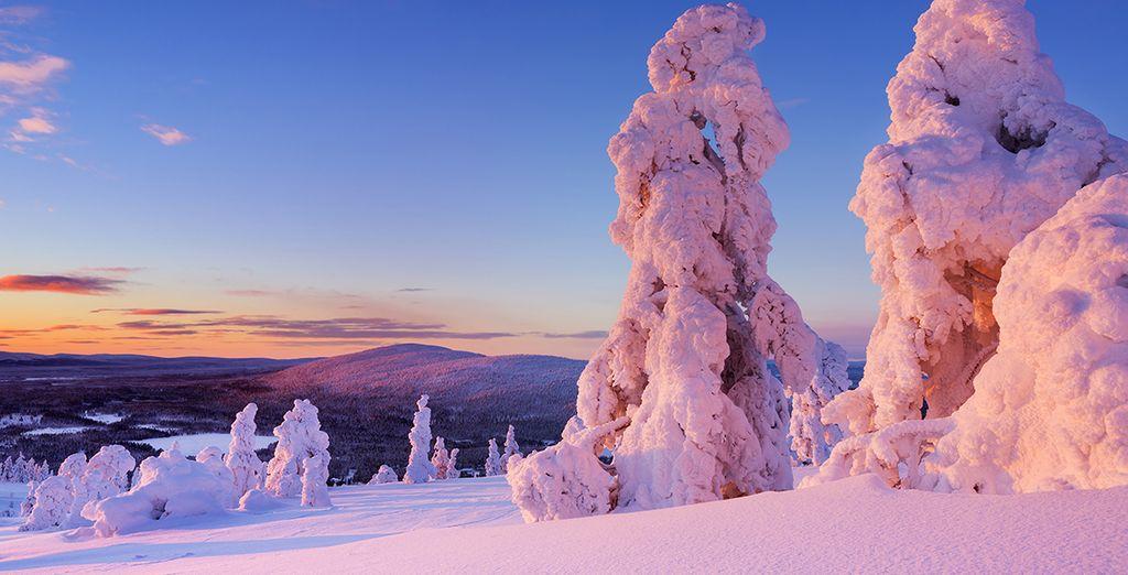 Kom naar het Finse Levi deze winter