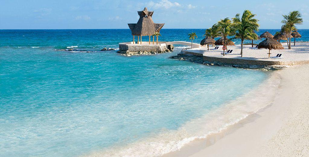 Reis met ons mee naar Mexico