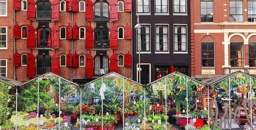 Bezoek de bloemenmarkt