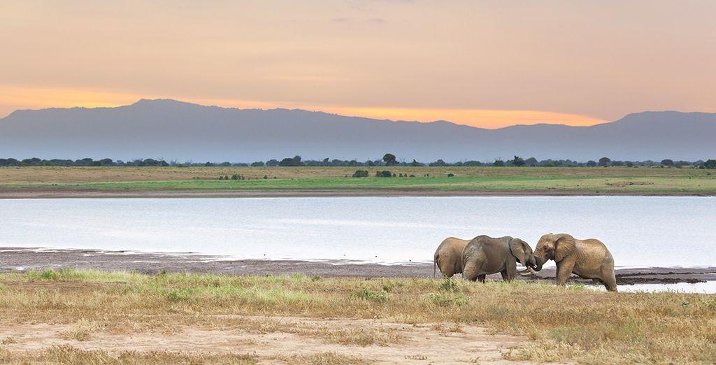 Naar het nationale park van Tsavo East