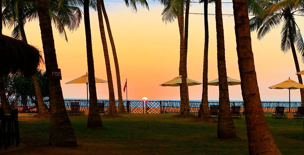Vlieg naar het prachtige Sri Lanka