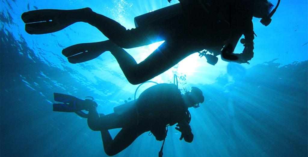 Of de fantastische onderwaterwereld