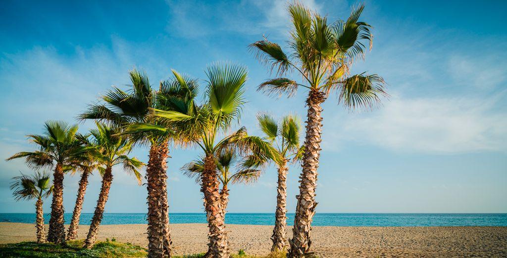 Feel the gentle sea breeze of the Costa del Sol