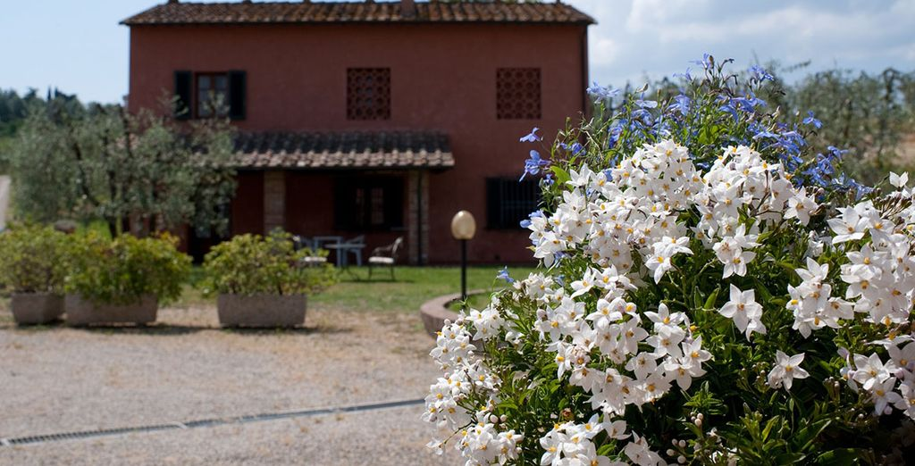 When you stay in the Chianti region's Fattoria Primavera
