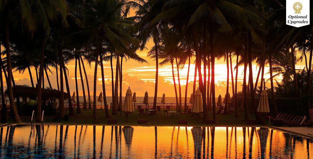 Escape to exotic Sri Lanka