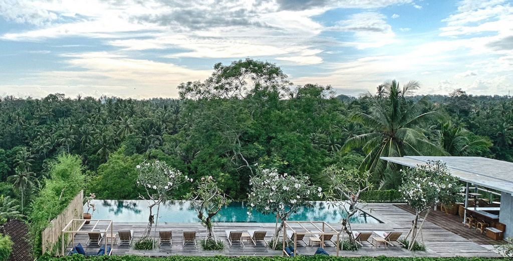 Discover the joys of Bali!