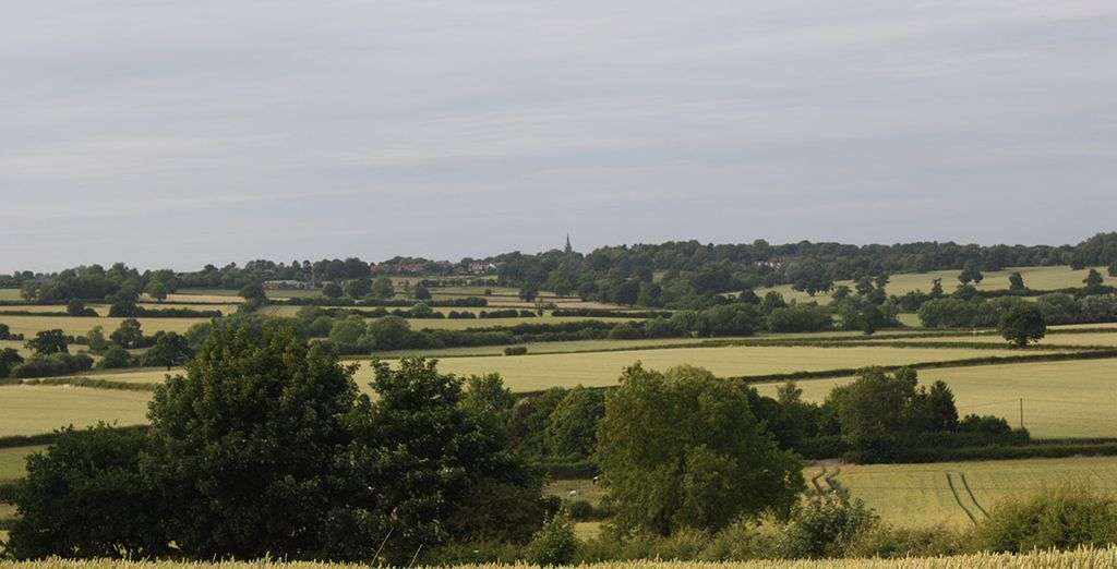 Head out and explore - you're just 8 miles from Bosworth Battlefield