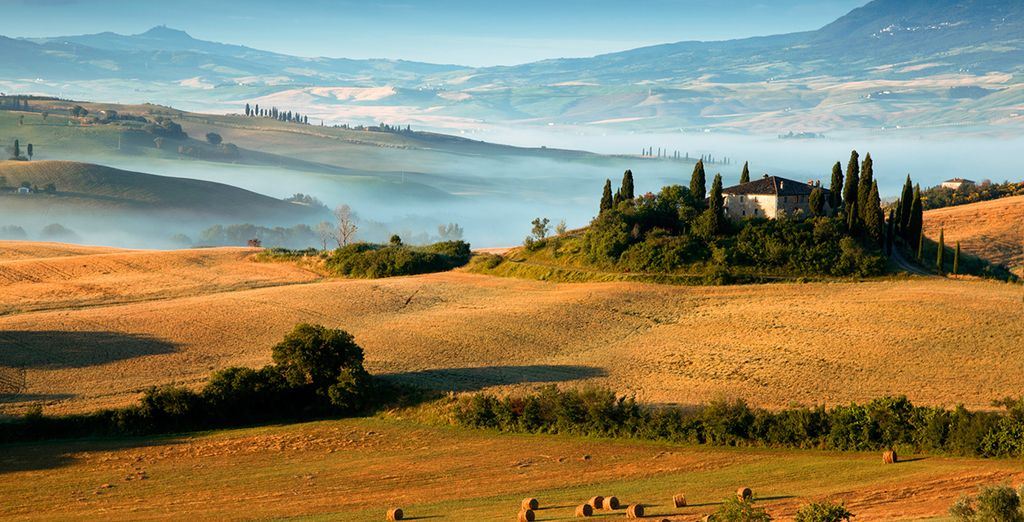 Delve into the famously beautiful hills of Tuscany...
