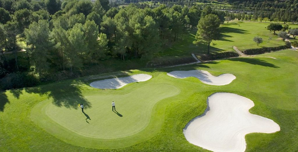 Enjoy a stop of golf