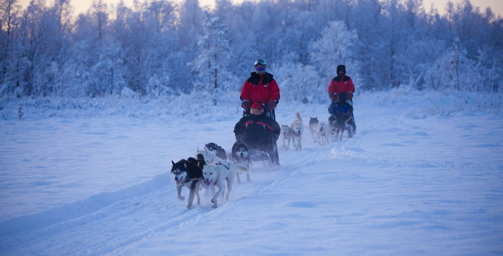 Like searching for the Northern Lights whilst being pulled by a team of huskies