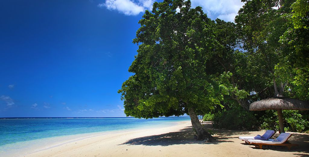 Set on the turquoise waters of Tamarin Bay - Maradiva Villas Resort & Spa***** - Mauritius Mauritius