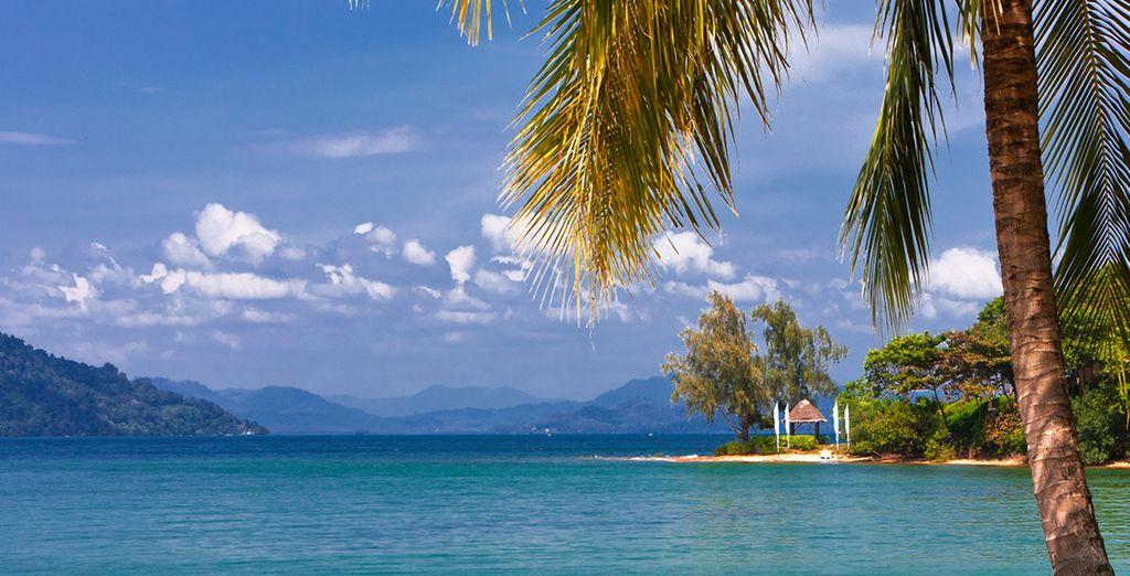 Enjoy paradise