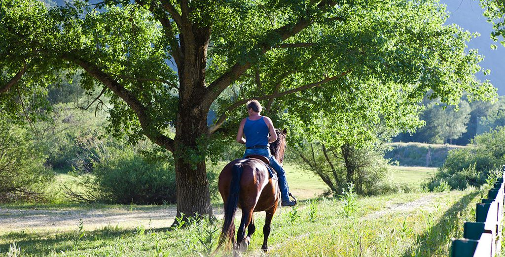 Do some riding with the farm's family horses