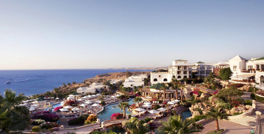 - Hyatt Regency***** - Sharm el Sheikh - Egypt Sharm El Sheikh