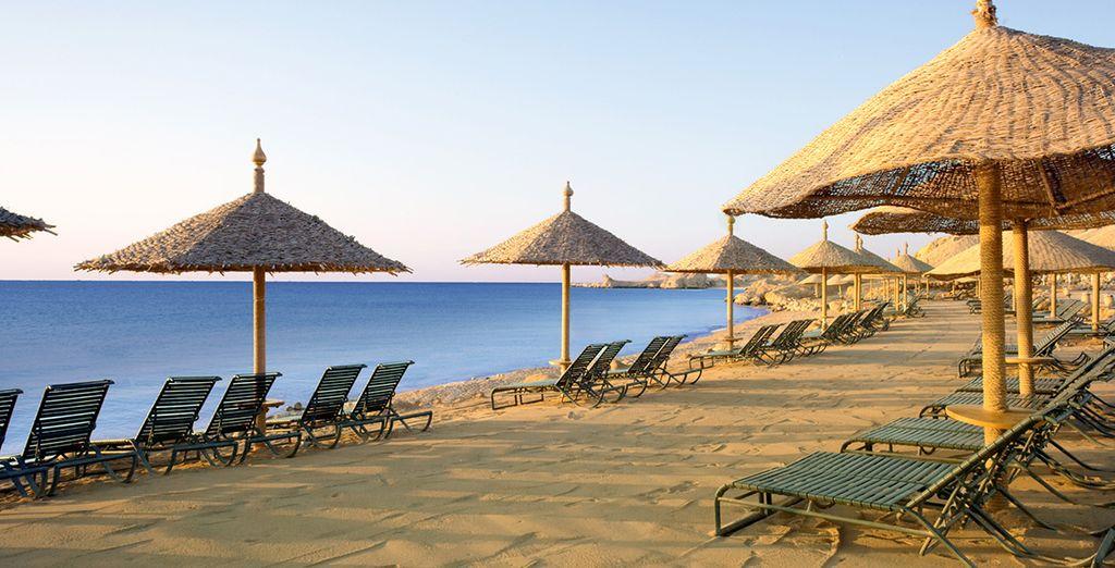 To sunny Sharm el Sheikh - Hyatt Regency Sharm 5* Sharm El Sheikh