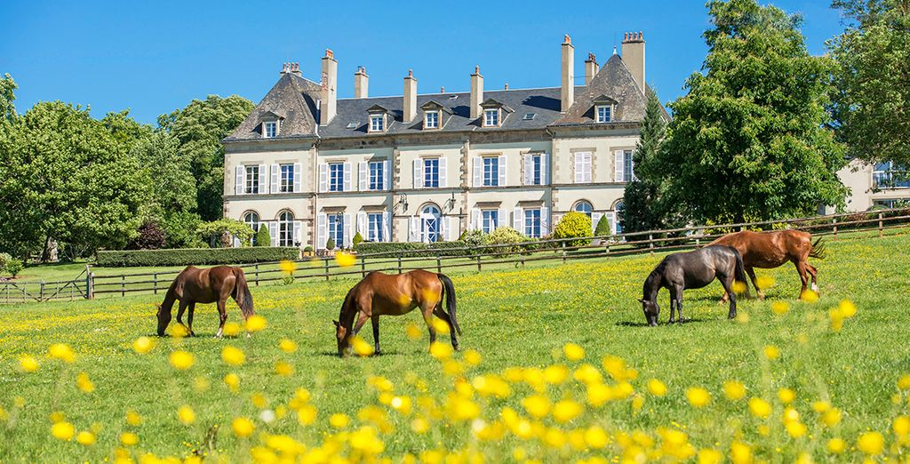 Experience the beautiful Ygrande - Chateau d'Ygrande 4* Ygrande