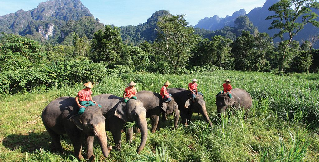 Embark on a thrilling adventure to Thailand