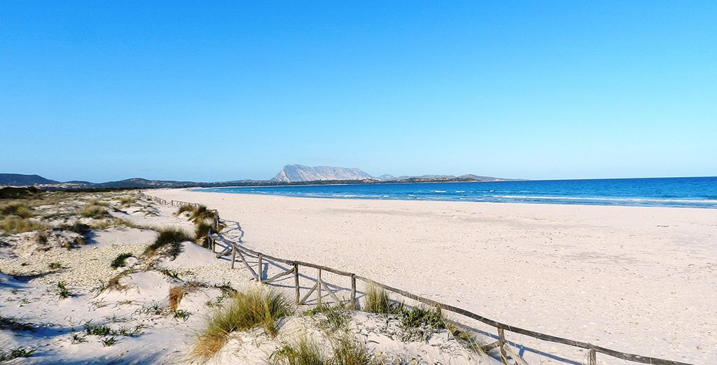 Or set out to discover the beautiful beaches