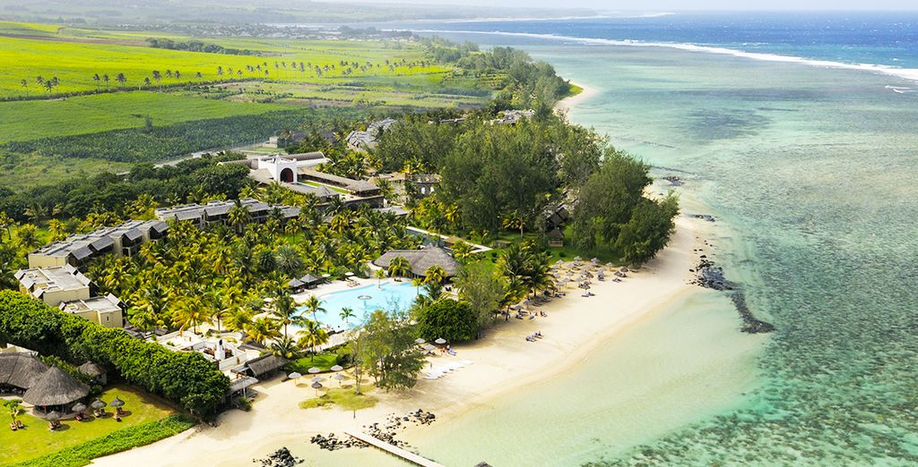 On a supreme island paradise