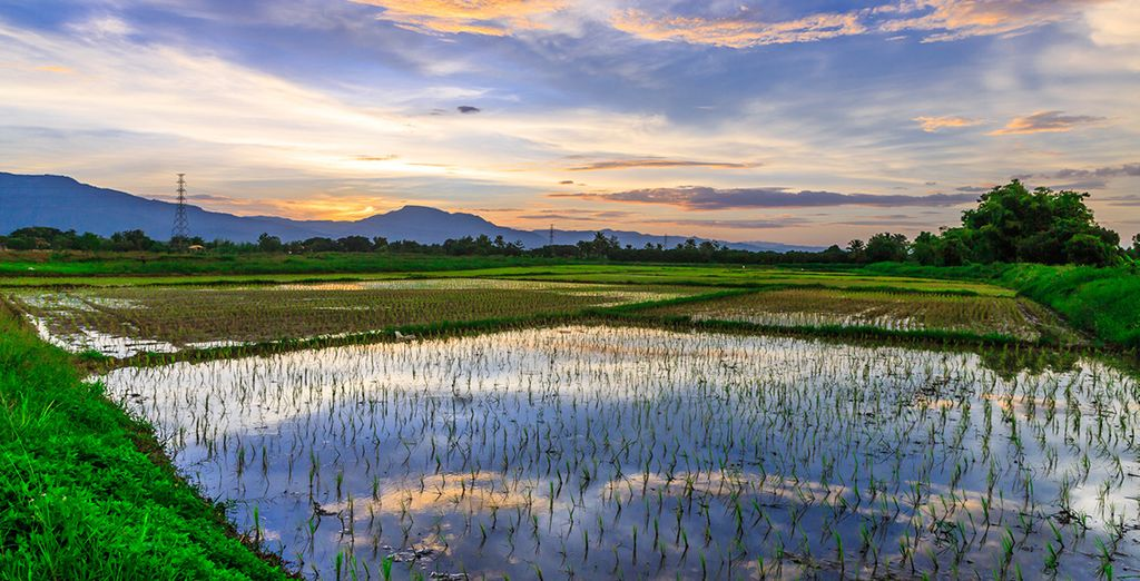 Then head to Chiang Mai - a laid back city at the foothills of the mountains