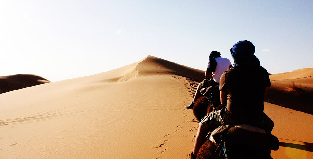 Stay 7 nights and take part in an amazing 3 night desert experience