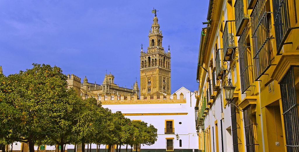 Relish the architectural wonders of Seville