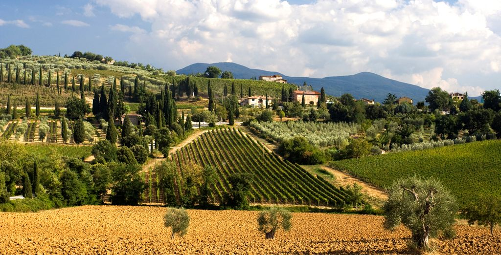 Explore some local vineyards and charming hilltop towns with our optional car hire