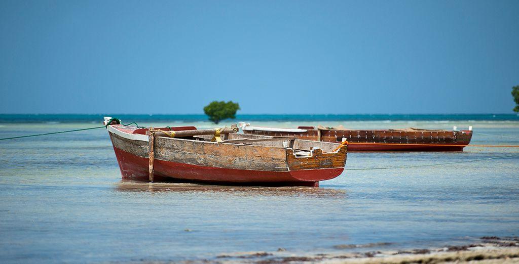 All on the Spice Island of Zanzibar