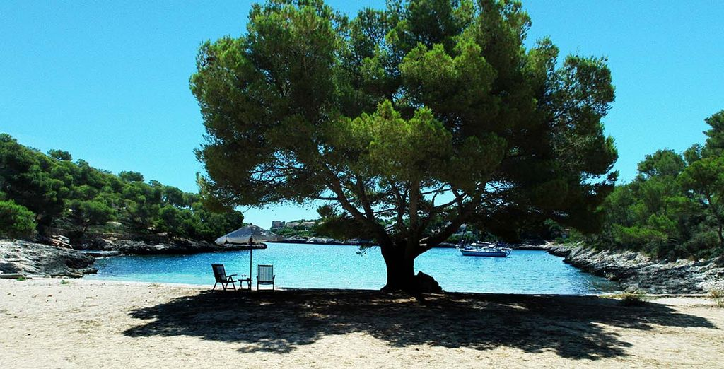 Admire the quiet, secluded beach