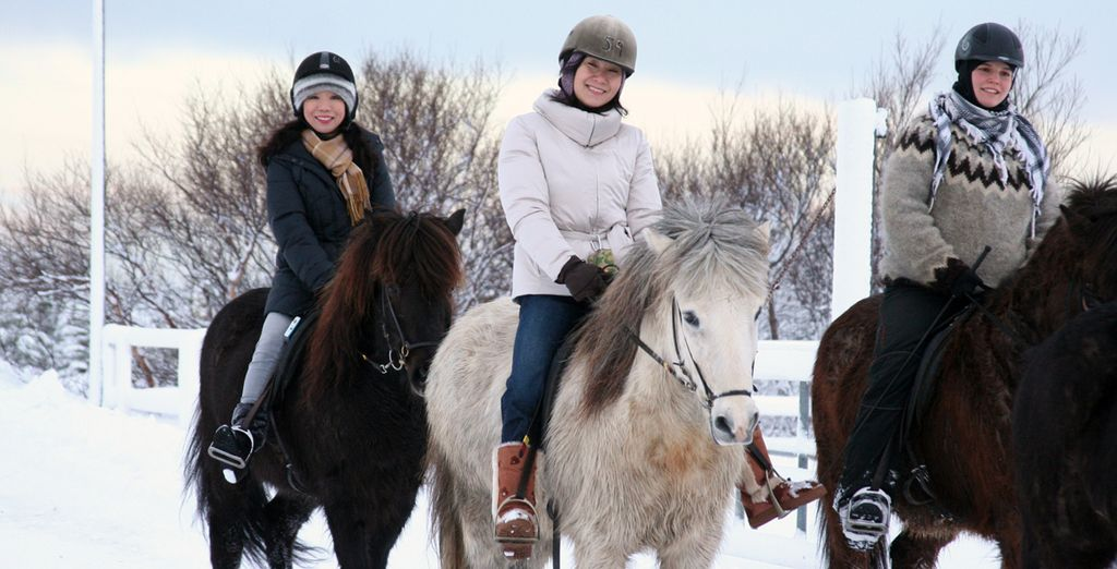 So you can discover Iceland on their famous ponies!