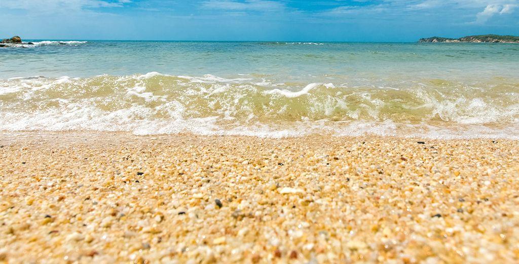 Enjoy the gentle sea breeze