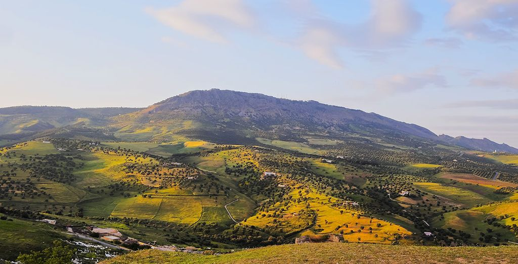 Pass through the pretty mountain health resort of Ifrane