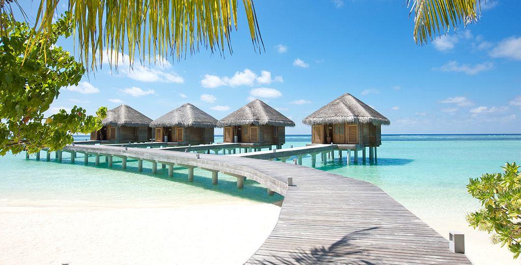 LUX* South Ari Atoll 5* awaits....