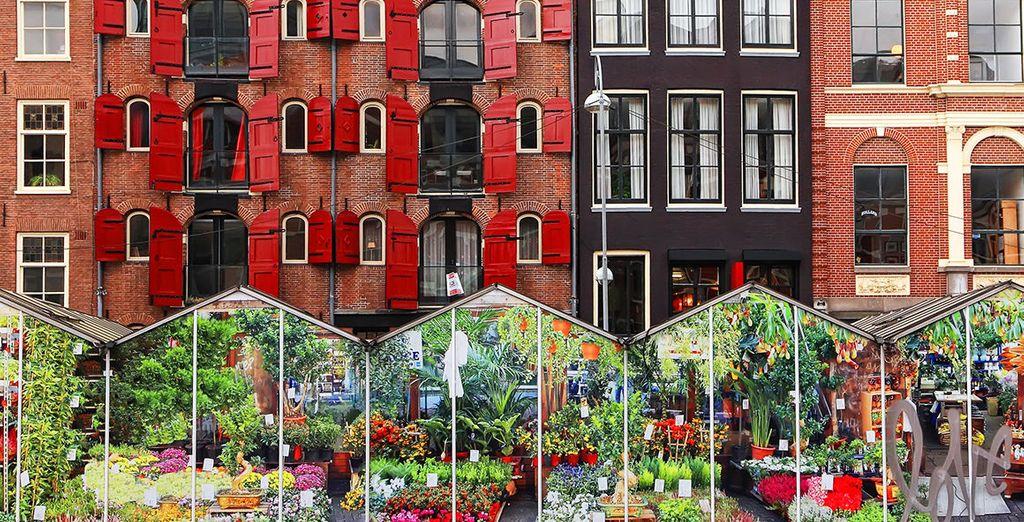 Relish the flower markets of Amsterdam - Hotel Amsterdam De Roode Leeuw 4* Amsterdam
