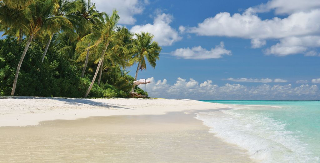 Or simple relax on the heavenly white sand