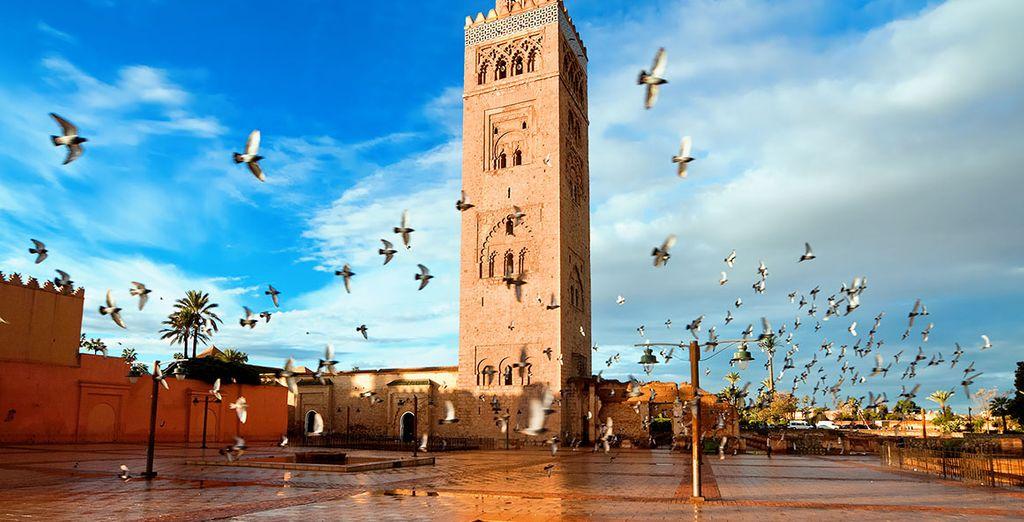 Explore Marrakech!