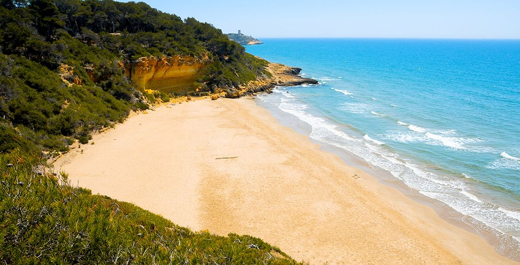 Or explore the beautiful beaches nearby