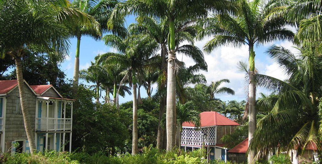 Stroll around the picturesque gardens...