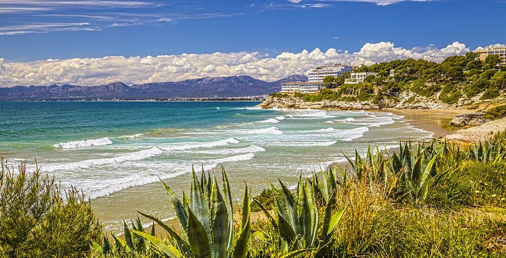 Enjoy the numerous sandy beaches...