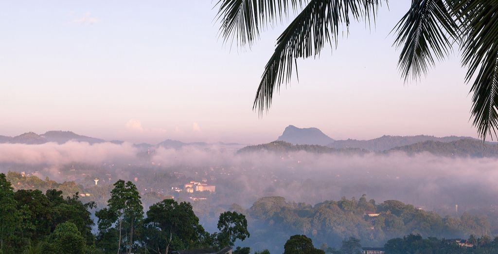 And admire the scenery of Nuwara Eliya!