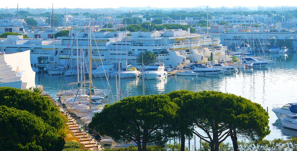 Explore the marina...