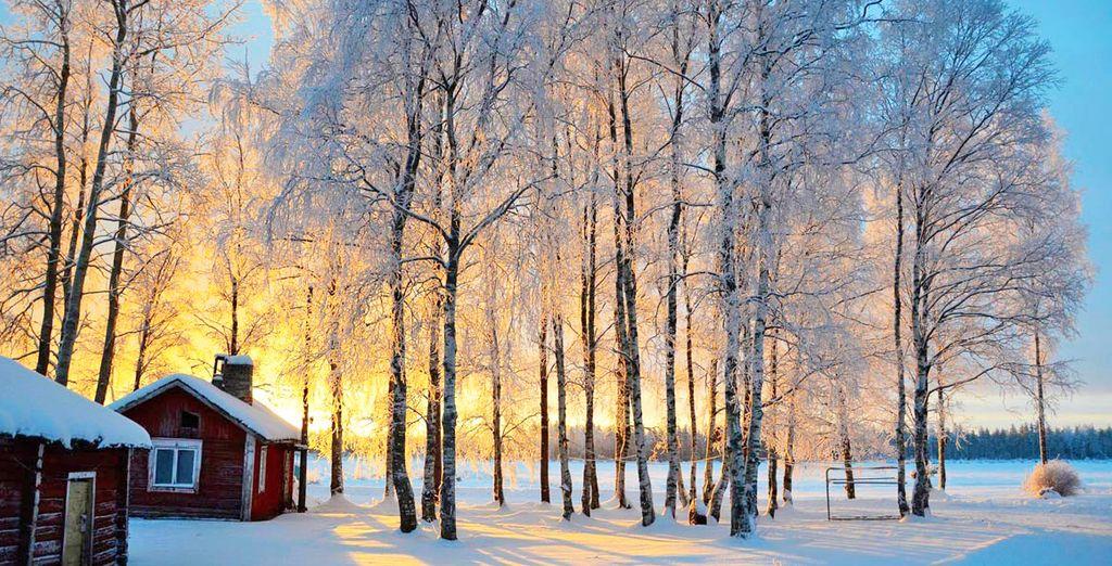 Visit Luleå, a coastal city in Swedish Lapland