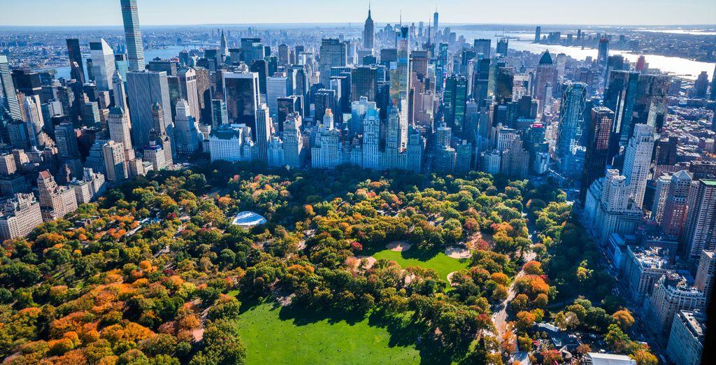 Soak up the sunshine in Central Park