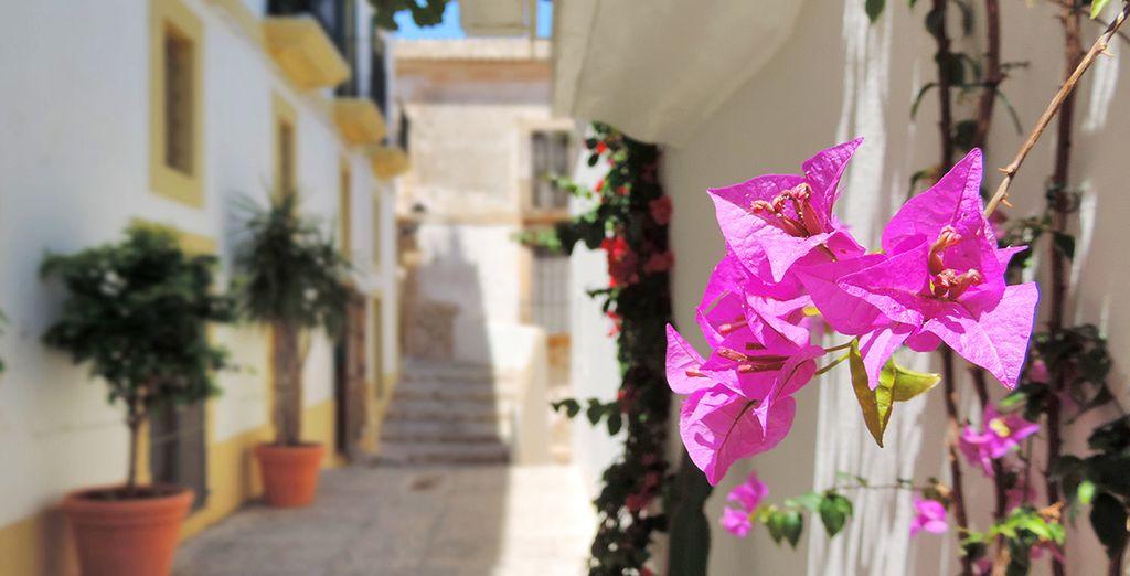 Explore the old cobbled streets of Dalt Vila