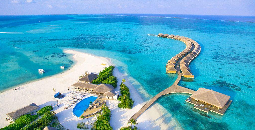 Escape to an unexplored island paradise...