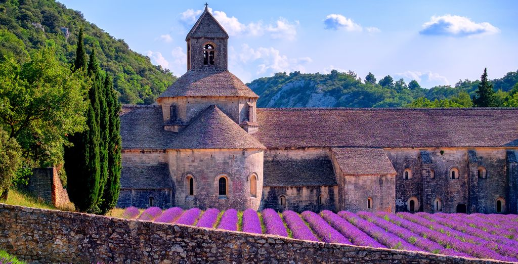 The beauty of Provence will amaze (pictured: Senanque Monastery)