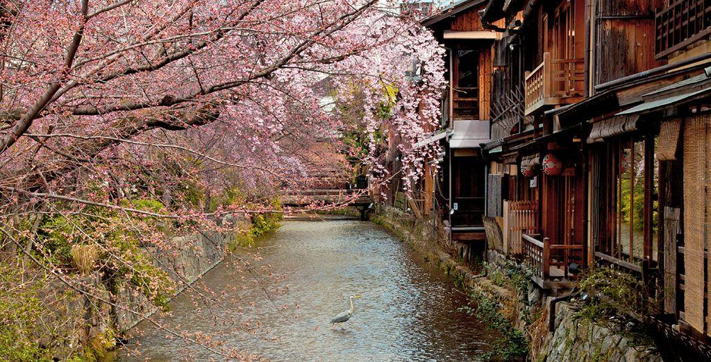 Booking Tokyo
