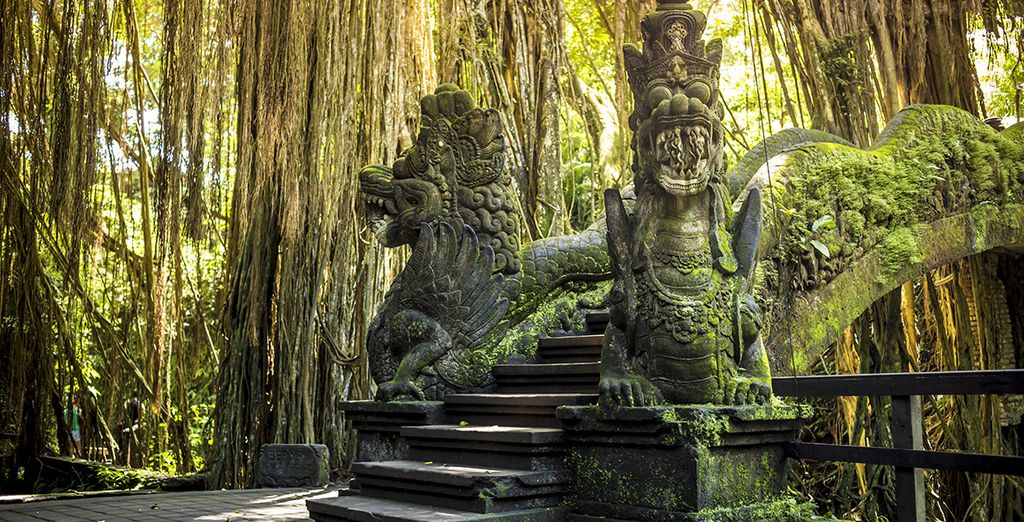 In Ubud and beyond...