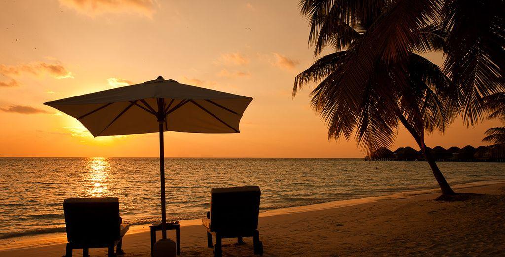 Honeymoon the the Maldives
