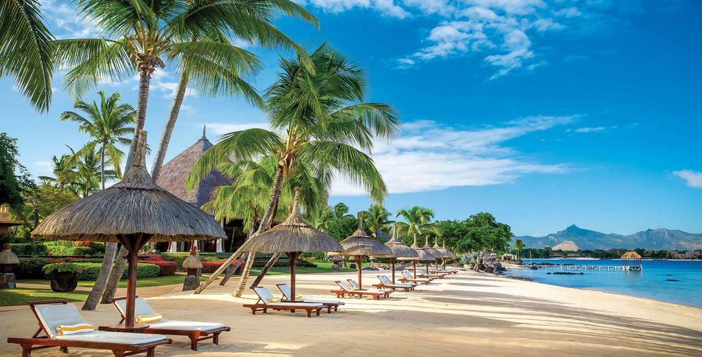Summer Holidays Mauritius